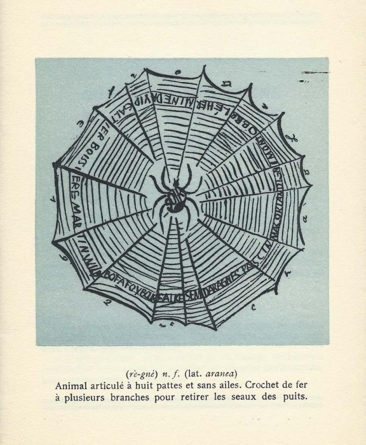 cat-araignee-1925-2